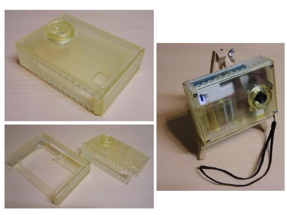 Renesus GR-LYCHEE Customizable Camera Case